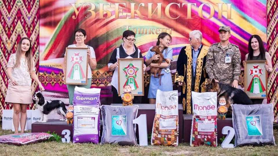 Ташкент!!! 2 Интернациональные выставки!